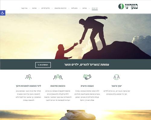 אתר וורדפרס זול- עמותה בנעורינו